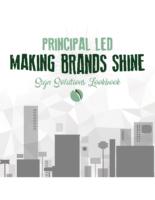 2018 Lookbook Making Brands Shine